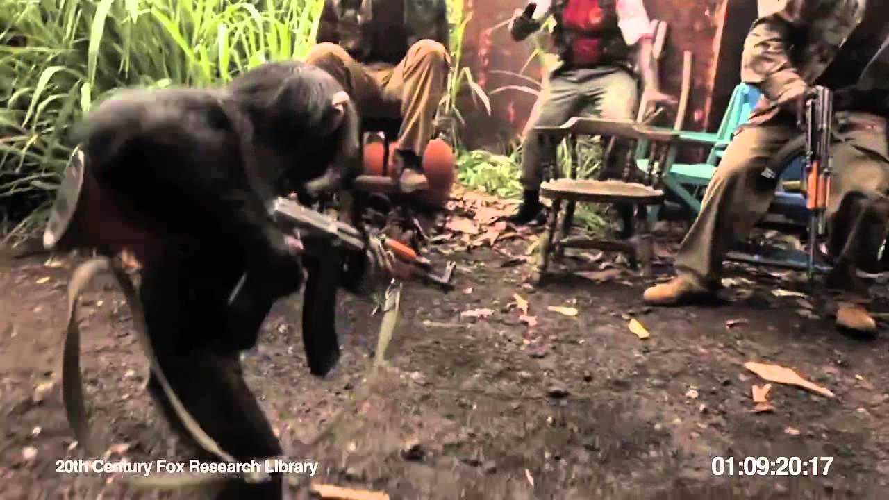 youtube video chimp with ak47 size62.6KB